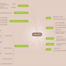 manage money with mind maps